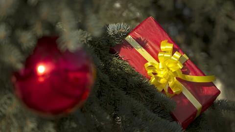 Ein Weihnachtsgeschenk.