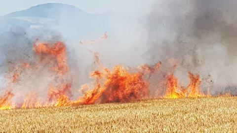 Brennendes Getreidefeld bei Guxhagen
