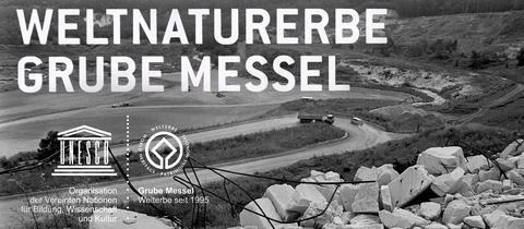 Grube Messel: Welterbe