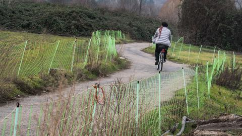Radfahrer in Grüne-Soße-Feld in Frankfurt