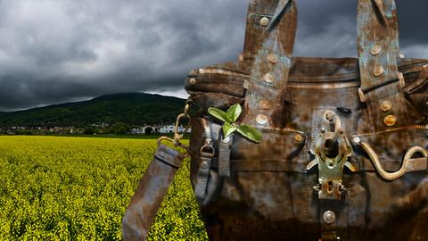 Bildmontage mit einer schmutzigen Tasche und einem Feld vor Zwingenberg.