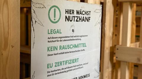 Hanf Startup Fulda