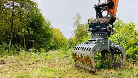 Harvester im Herrenwald