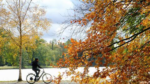 Ein Fahrradfahrer fährt im Hintergrund an einem Weiher entlang. Im Vordergrund ist gelb-rot gefärbtes Laub zu sehen.