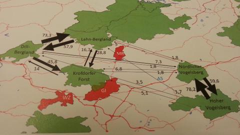 Karte, die den Austausch der Hirsche zeigt.