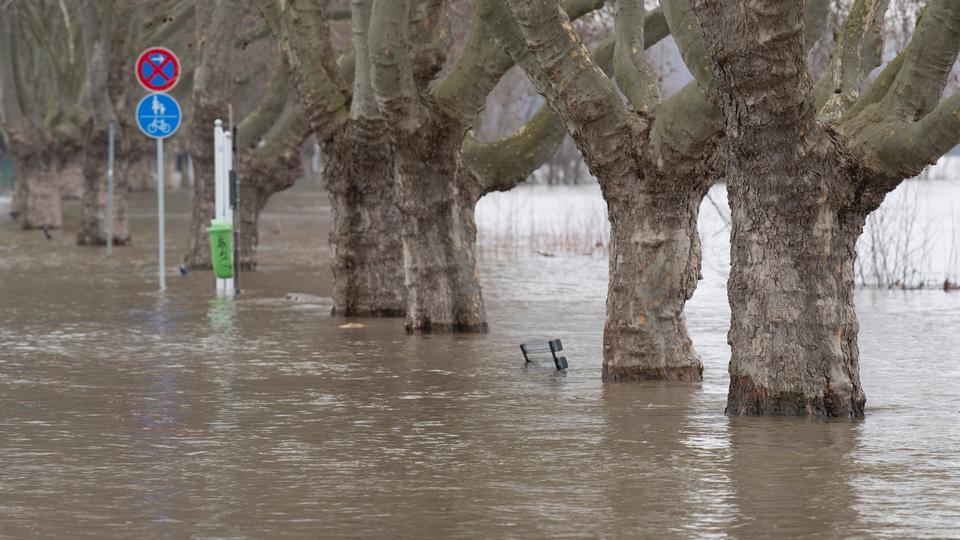 Wetter Au Am Rhein