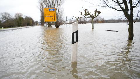B42 Hochwasser Rhein