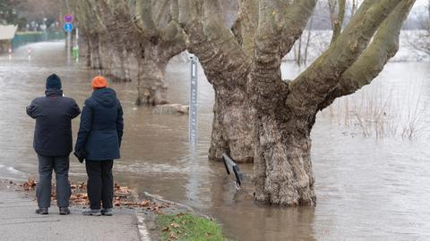Spaziergänger an einer überfluteten Uferstraße am Sonntag in Rüdesheim