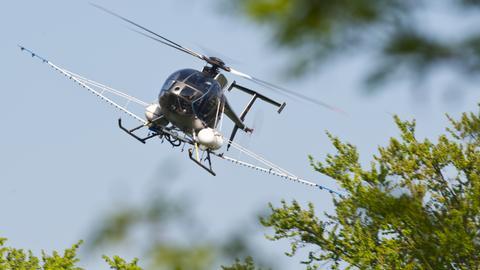 Ein Hubschrauber mit Armen versprüht über dem Frankfurter Stadtwald ein Mittel gegen den Eichenprozessionsspinner.