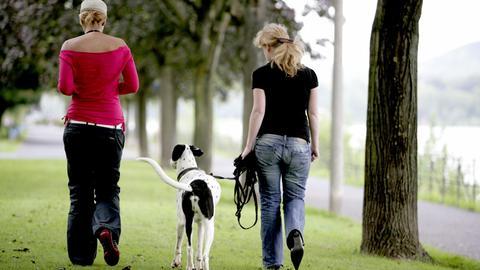Zwei Frauen gehen mit einem Hund spazieren