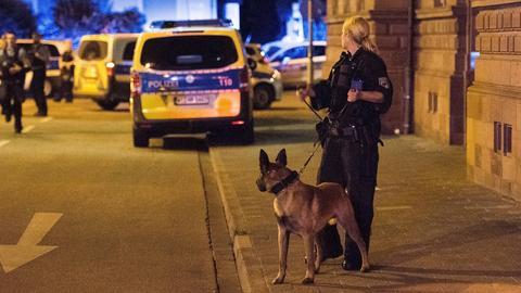Nächtlicher Polizeieinsatz in Darmstadt mit - Polizistin mit Diensthund