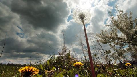 Dunkle Wolken in Kriftel