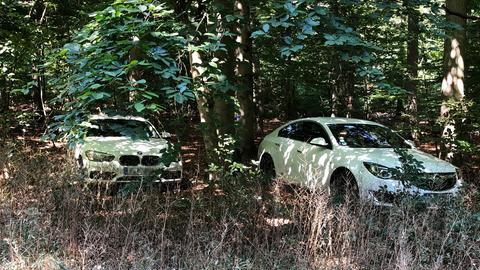 Am vergangenen Wochenende parkten die Autos am Langener Waldsee sogar im Wald.