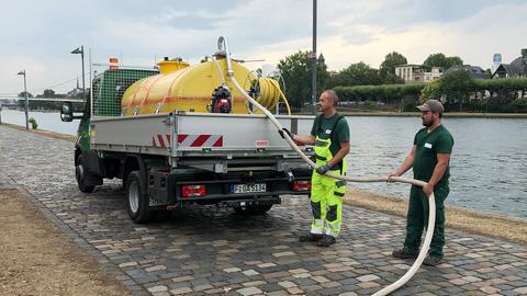 Ein Lastwagen pumpt Wasser aus dem Main.
