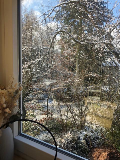 Ein bisschen Schnee in einem Garten.