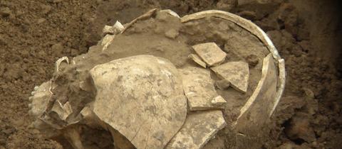Im Vorfeld von Bauarbeiten in Frankfurt wurde einmenschlicher Schädel aus derSteinzeit gefunden
