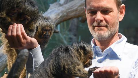 Miguel Casares, neuer Frankfurter Zoodirektor, mit Weißkopfsakis