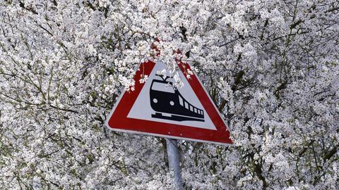 Dieser blütenreiche Schnappschuss ist hessenschau.de-Nutzerin Julia Riemenschneider an einem Bahnübergang bei Dorheim in der Wetterau gelungen.