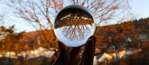 Die Idee, die Eiche in einer Glaskugel abzulichten, hatte hessenschau.de-Nutzer Samuel Neumeister.
