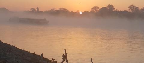 """""""Mystik am Rhein in Eltville"""", schreibt uns hessenschau.de-Nutzerin Manuela Zimmermann aus Eppstein zu ihrem Foto. Haben Sie auch ein außergewöhnliches Bild aus Hessen? Dann schicken Sie uns Ihr Foto – wir freuen uns über Ihre Momentaufnahme."""