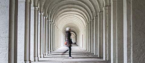 Gruftenweg auf dem Frankfurter Hauptfriedhof