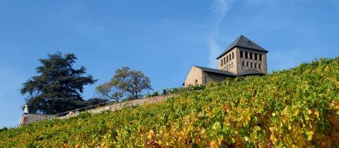 """""""Goldener Oktober"""" im Rheingau. Aufgenommen am Schloss Johannisberg mit Schlosskapelle. Das Foto hat uns hessenschau.de-Nutzerin Hadwiga Machar geschickt. Haben Sie auch ein außergewöhnliches Bild aus Hessen? Dann schicken Sie uns Ihr Foto – wir freuen uns über Ihre Momentaufnahme."""
