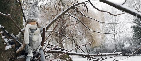 """""""Da sitz' ich hier und frier'"""", schreibt uns hessenschau.de-Nutzer Günther Appich aus Gründau-Rothenbergen zu seinem Foto. Haben Sie auch ein außergewöhnliches Bild aus Hessen? Dann schicken Sie uns Ihr Foto – wir freuen uns über Ihre Momentaufnahme."""