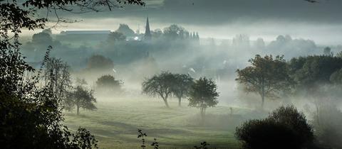 Rainrod bei Schotten im Nebel
