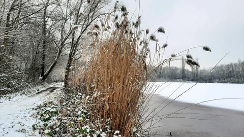 """""""Diesmal gab es Schneefall bis in die Niederungen ... auch am Angelweiher in Obertshausen"""", schreibt uns hessenschau.de-Nutzer Jens Landeck zu seinem Foto."""