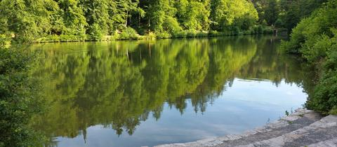 Momentaufnahme Waldsee Bad Schwalbach
