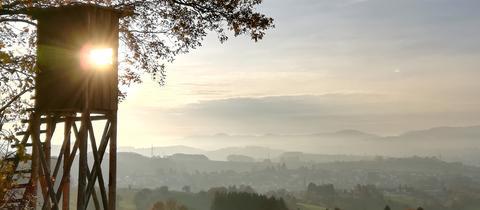 Dieses herbstliche Motiv in Zotzenbach im Odenwald schickte uns hessenschau.de-Nutzerin Christiane Fendrich. Haben Sie auch ein außergewöhnliches Bild aus Hessen? Dann schicken Sie uns Ihr Foto an foto@hessenschau.de.