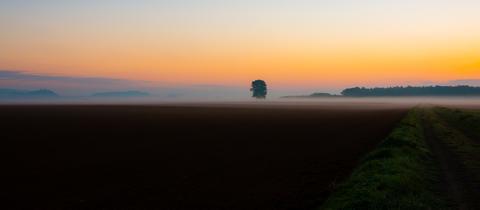 momentaufnahme-sonnenaufgang-nebel