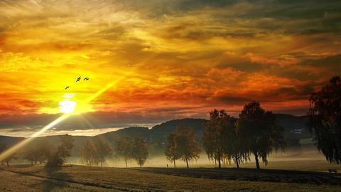 Schöner hätte man es nicht malen können. Diesen wunderschönen Sonnenaufgang bei Frühnebel in der Reichelsheimer Stockwiese hat uns hessenschau.de-Nutzer Gido Heß zukommen lassen. Vielen Dank dafür!