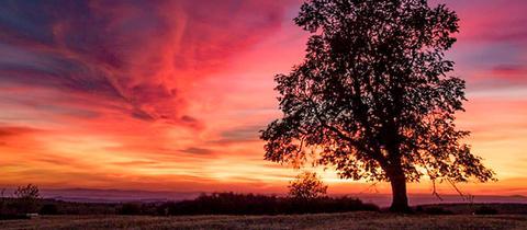 Den schönen Sonnenuntergang hat hessenschau.de-Nutzer Erich Pietsch bei Schotten mit seiner Kamera eingefangen. Haben Sie auch ein außergewöhnliches Bild aus Hessen? Dann schicken Sie uns Ihr Foto – wir freuen uns über Ihre Momentaufnahme.