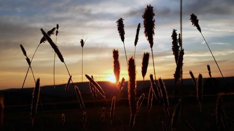 Den wunderschönen Sonnenuntergang in Bad Orb hat uns hessenschau.de-Nutzer Christoph Schmalbach geschickt.