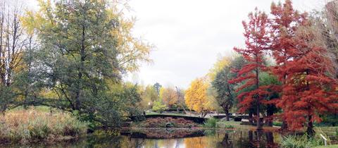 Das herbstliche Foto vom Ahnepark in Vellmar hat uns hessenschau.de-Nutzer Klaus Fröhlich aus Kassel geschickt.