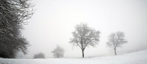 """""""Alles weiß, grau und schwarz, die im Winter vorherrschenden Farben"""", schreibt uns hessenschau.de-Nutzerin Ilona Nickel aus Siegbach-Tringenstein zu ihrem winterlichen Foto."""
