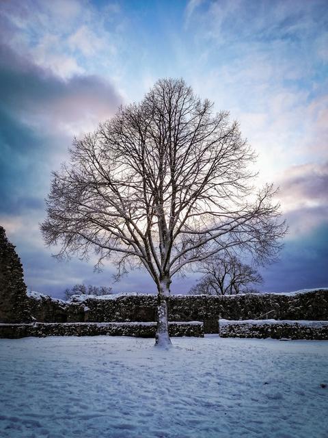 Winterbild von der Burg Lindenfels