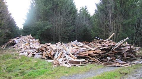 Der illegale Müllhaufen im Wald von Frankenau.