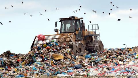 Mülldeponie Flörsheim-Wicker