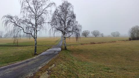 Nebel über den Schwalmwiesen