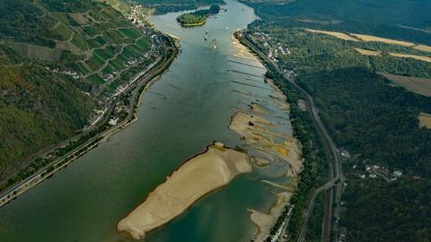 Sandbank im Rhein bei Lorch
