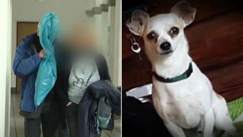 Der Angeklagte trägt den Stock, mit dem er Norbert (rechtes Bild) erschlagen haben will, in einer Plastiktüte verpackt in den Gerichtssaal.