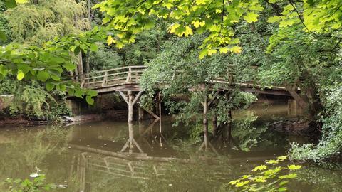 Der Jakobiweiher im Frankfurter Stadtwald
