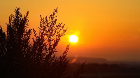 Sonnenaufgang bei Rosbach (Wetterau)