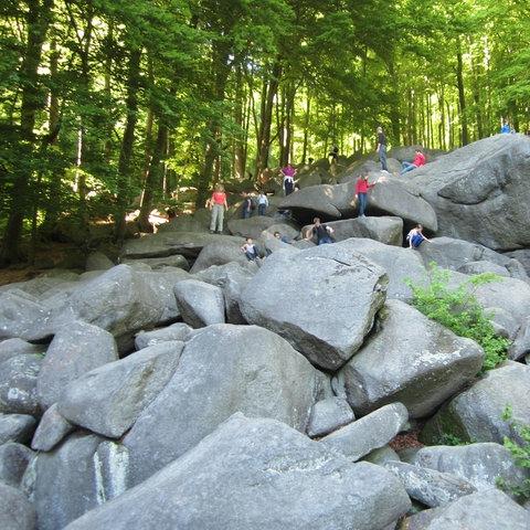 Foto vom sogenannten Felsenmeer im hessischen Odenwald. Menschen klettern auf großen Felsen mitten im Wald.
