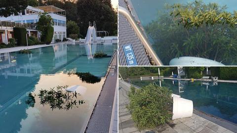 Ins Becken geworfene und umgestürzte Blumenkübel im Opelbad