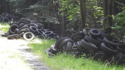 In einem Waldstück an einem Weg bei der B27 liegen bis zu 1.000 illegal entsorgte Reifen bei Eichenzell.