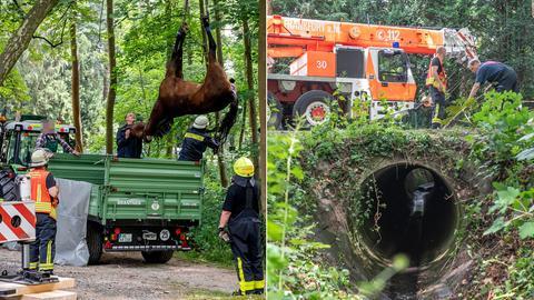 Rettungseinsatz und Wasserschacht in Kronberg