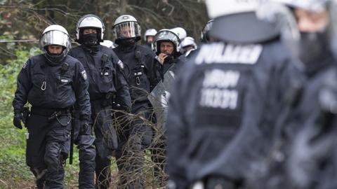 Polizei rückt in den Herrenwald vor